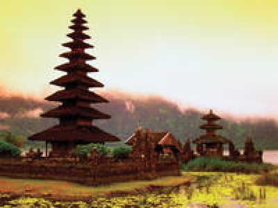 9-Day Best of Bali Tour: Ubud