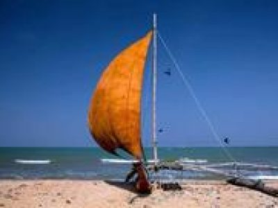Private 6-Day Sightseeing Tour around Sri Lanka including Pinnawala