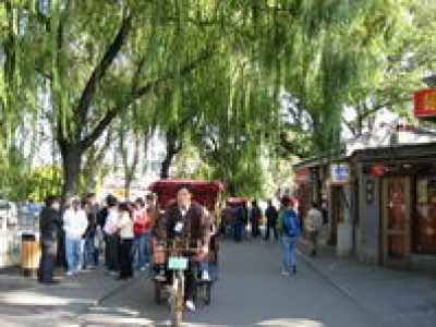 Private Cultural Day Tour: Hutong Rickshaw Ride