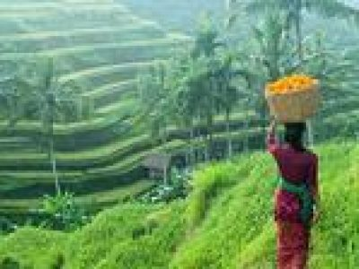 Private Half-Day Ubud Art and Culture Tour