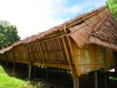 Rungus Longhouse and Tip of Borneo Experience